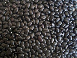 Bust-it-Out Black Bean Dip