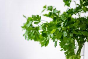 Dijon-Herb Tuna on Mixed Greens
